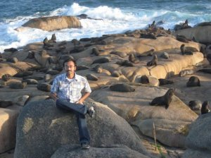 With SeaLions and Roaring waves