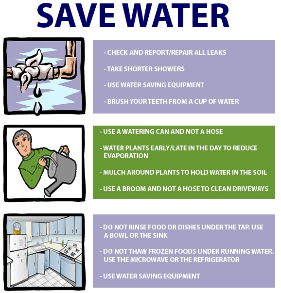save water - essay